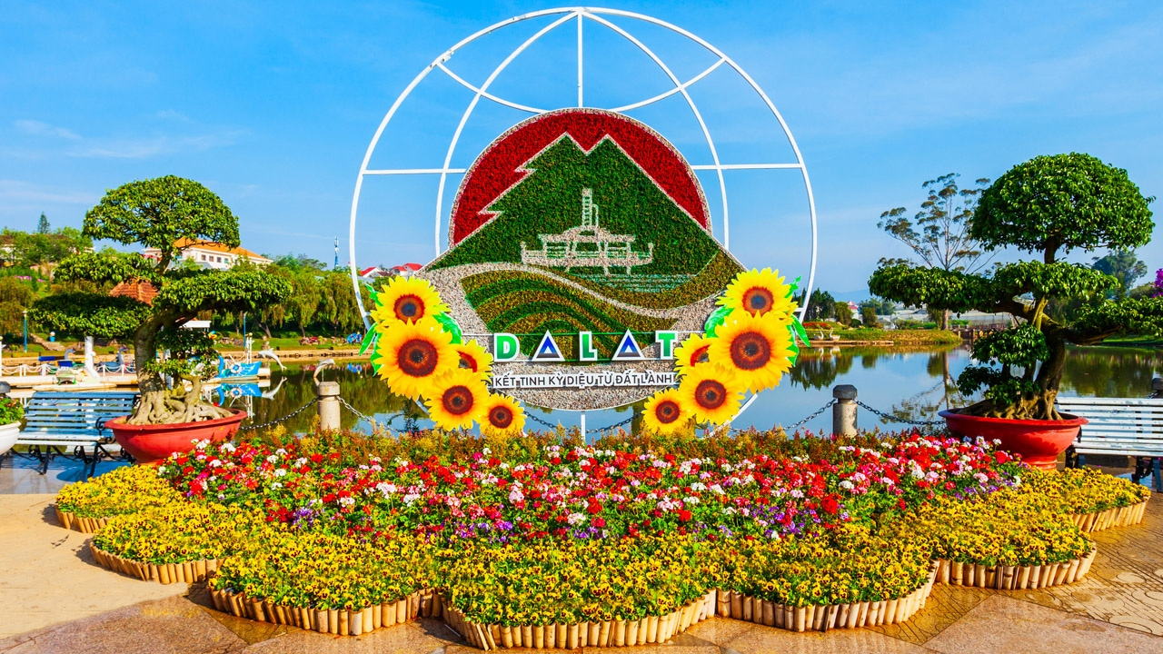 The floral abundance of the Đà Lạt Flower Garden